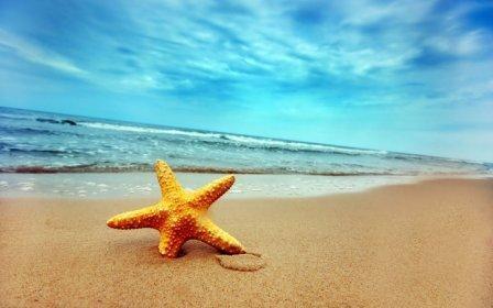 Imagem da notícia: JoiaPro vai de férias!