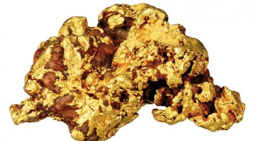 Imagem da notícia: Cultivar ouro?