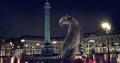 Imagem da notícia: Cartier abre em Lisboa