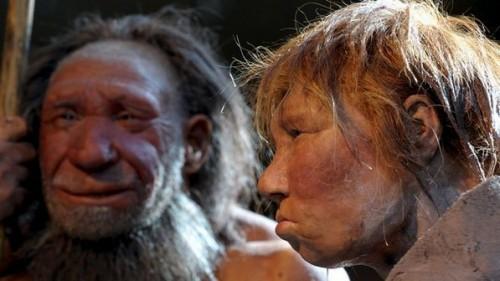 Imagem da notícia: Neandertais já faziam joias?