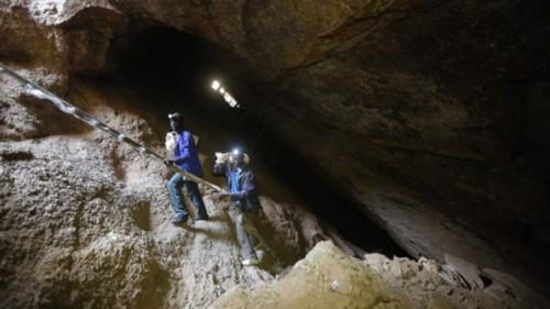 Imagem da notícia: Mina de ouro moçambicana vendida