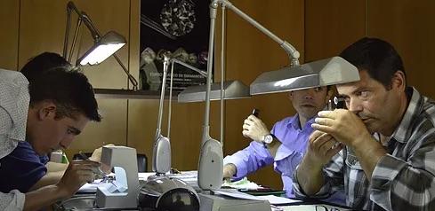 Imagem da notícia: Curso Prático de Diamantes regressa em novembro